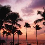 If You Do Any Of These, It Might Be Time For A Hawaiian Vacation